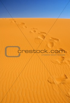 footsteps on sand dunes