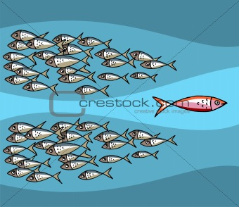 Fish Swimming Against The Tide