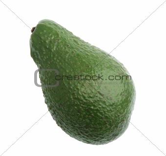 Single green avocado.