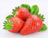 Berries of strawberry