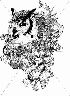 Floral Owl Illustration