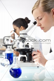 Female Scientific Research Team Using Microscopes in a Laborator