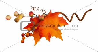 autumn branch1