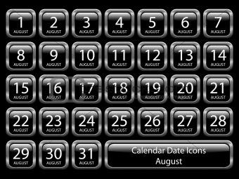 Calendar Icon Set - August