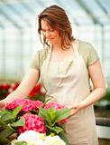Young female florist at a greenhouse surrounded with flowers