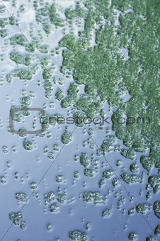 Green crystals of sea salt