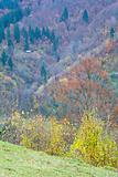 autumn mountainside view