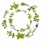 Herb Leaf Abstract Design