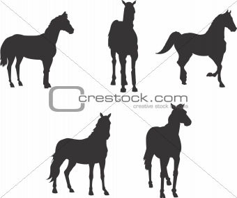 Animal clip art design