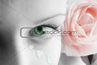 green eye red rose