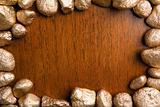 Wood framed by golden nuggets