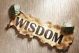 Wisdom concept