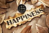 Guidance to happiness concept
