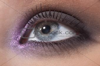 Beautiful female eye in a fashionable make-up