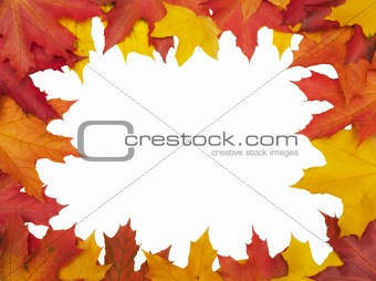 Autumn leafs frame (clipping path isolation)