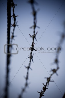 Abstract barbed wire with short focal depth