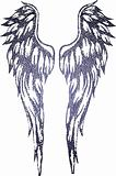 tribal wing illustration