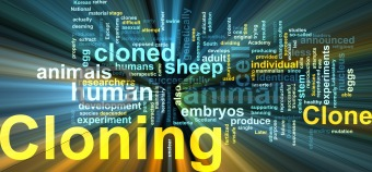 Cloning word cloud glowing