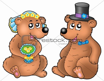 Pair of cute wedding bears