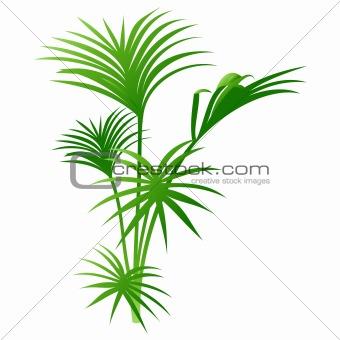 Green leaf stick