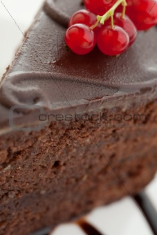 Slice of delicious chocolate cake with red currants