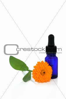 Calendula Flower Essential Oil