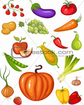 vegetable
