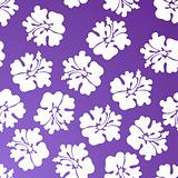 Hibiscus Pattern - Purple