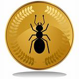 Gold Coin - Ant