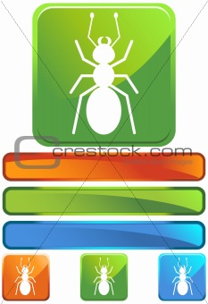 Green Square Icon - Ant