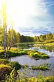 small river and splendid sunrise