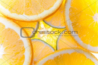 Citrus Slices Backlit