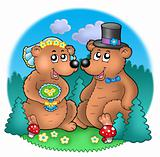 Wedding image with bears on meadow