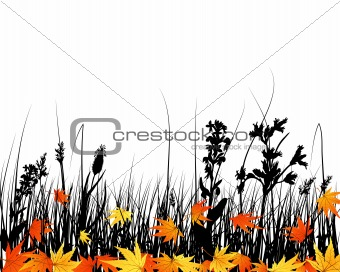 autumn meadow silhouettes