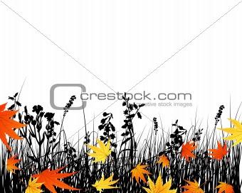 autumn meadow silhouettes