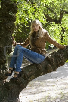 blond on branch