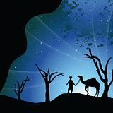 silhouette view of a man with camel