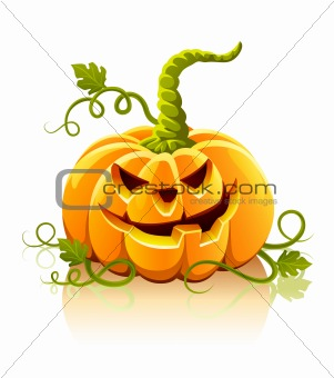frightful halloween pumpkin vegetable isolated
