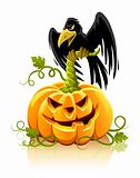 halloween pumpkin vegetable with black raven bird