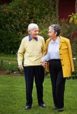 Elder couple walking