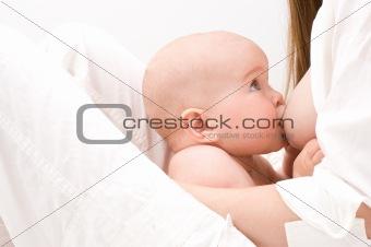 Closeup little baby breast feeding.