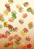 falling maple leaves made in illustrator cs4
