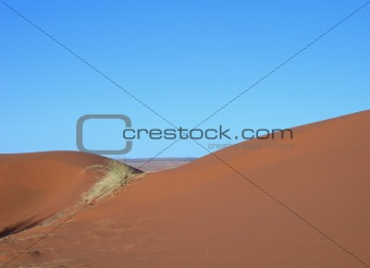 Sand dunes in the Kalahari desert