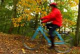 Forest biking woman