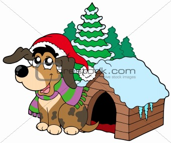 Cute Christmas dog