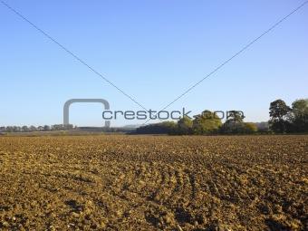 agricultural landscape 4