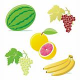 fully editable vector vector fruits with details ready to use
