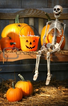 Colorful pumpkins and skeleton on bench