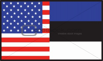 America Estonia Flag
