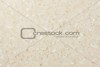 Background of white rice